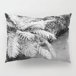 Ferns Pillow Sham