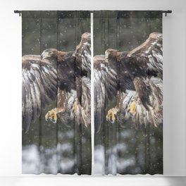 Eagle In The Snow. Blackout Curtain
