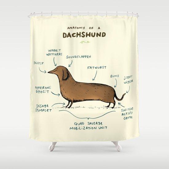 Attractive Anatomy Of A Dachshund Shower Curtain
