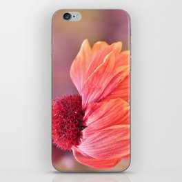 open your heart... iPhone Skin
