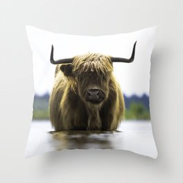 Scottish Highlander cow in the water!  Throw Pillow