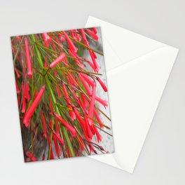 Matchstick Stationery Cards