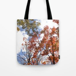 Fall Sky View, Wellesley College Tote Bag
