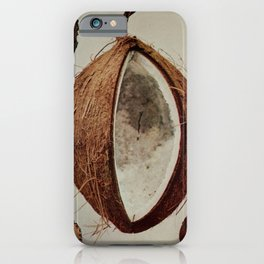 Vintage Print - Birds and Nature (1896) - Coconut iPhone Case