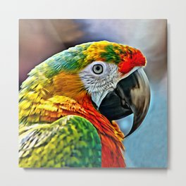 COLORFUL MACAW BIRD Metal Print