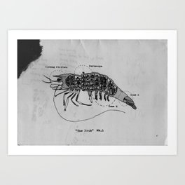 The Incredible World Of False History Cross Sections Pt.2 The Prawn Art Print