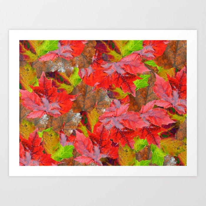 Autumn Fallen Leaves Art Print
