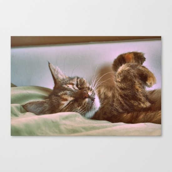 Yes we are Happy : ) Canvas Print