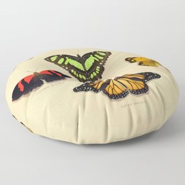 Butterfly Collection Floor Pillow