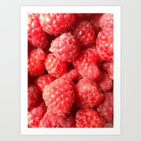 Raspberry Joy Art Print