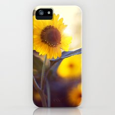 Sunflowers Slim Case iPhone (5, 5s)