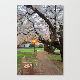 Blossoms & Benches Canvas Print