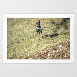 Care Free Dog Art Print