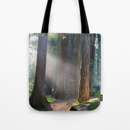 Keepers Of The Light Tote Bag