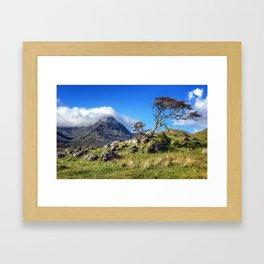 Red Cuillins Tree Framed Art Print