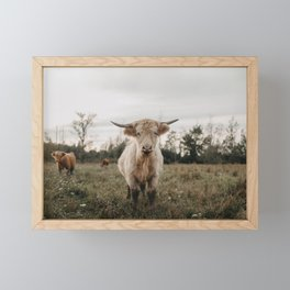 Highland Cow in The Meadow Framed Mini Art Print