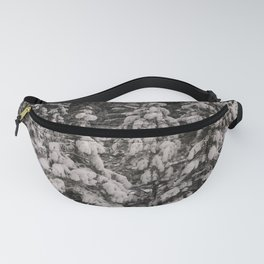 Winter Wonderland - Carol Highsmith Fanny Pack