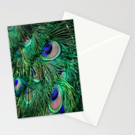 peacock IV Stationery Cards