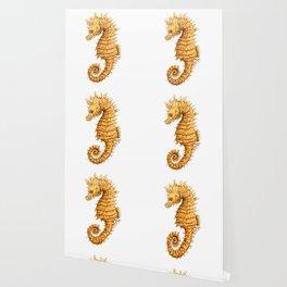 Sea horse, Horse of the seas, Seahorse beauty Wallpaper