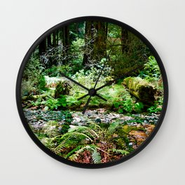 Muir Woods Study 13 Wall Clock