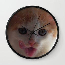 Cute baby cat Wall Clock