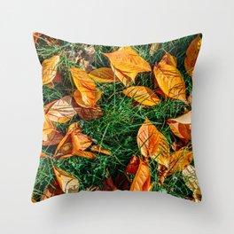 Orange Autumn Leaves Background In Fall Season, Autumn Season, Fall Background, Falling Leaves, Art Throw Pillow