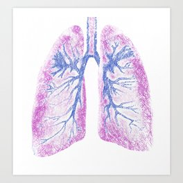 Lungs (Biro) Art Print