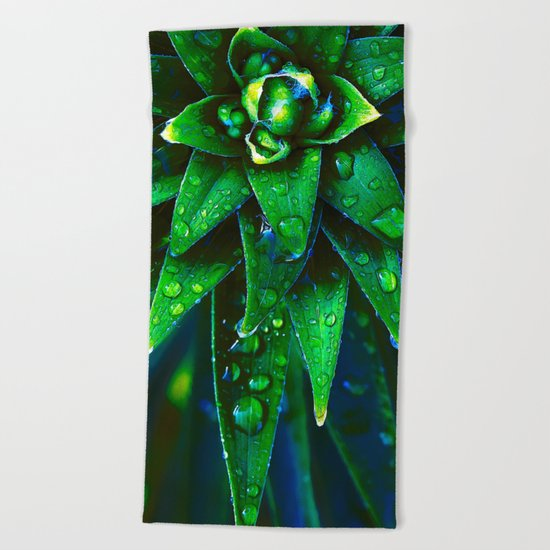 Morning Dew On Plant Beach Towel