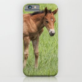 Little Colt iPhone Case