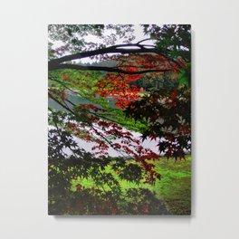 Environ (Japan) Metal Print