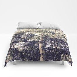 Dappled Light Filtered Through Trees Comforters