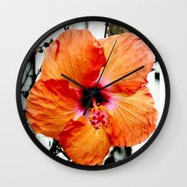 Hi Biscus Wall Clock