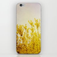 coldplay iPhone & iPod Skins featuring And it Was All Yellow by Olivia Joy StClaire