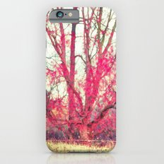 Ruby Winter Slim Case iPhone 6s