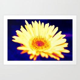 neon daisy Art Print