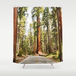 sequoia tree Shower Curtain