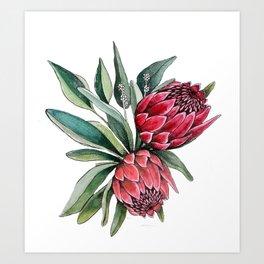 Protea watercolor Art Print