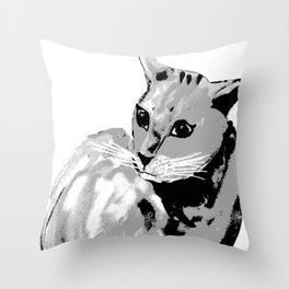 Katze,cat Throw Pillow