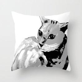Katze,cat Throw Pillow
