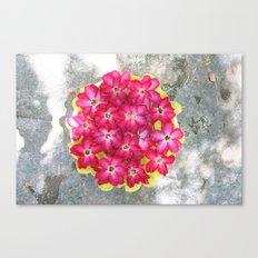 The floweress Canvas Print