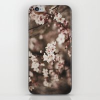 cherry blossom iPhone & iPod Skins featuring Cherry Blossom by Evan Dalen