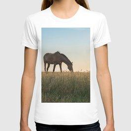 Grazing at Sunset T-shirt