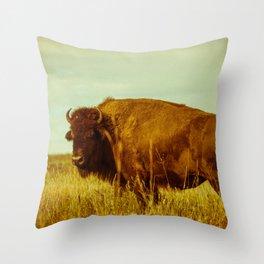Vintage Bison - Buffalo on the Oklahoma Prairie Throw Pillow
