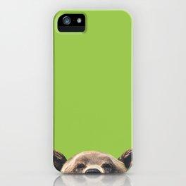 Bear - Green iPhone Case