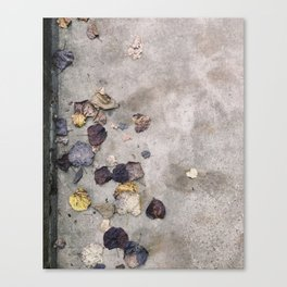 Charlottesville / Muted Leaves Canvas Print