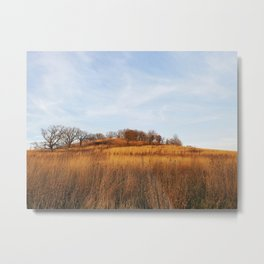 Golden Autumn Savanna Metal Print