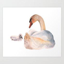 Swan Sweetness Art Print