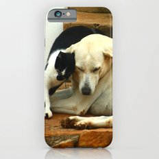 Like cats and dogs iPhone 6 Slim Case