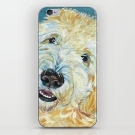 Stanley the Goldendoodle Dog Portrait iPhone Skin
