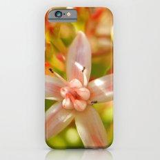 Watermelon Hues Slim Case iPhone 6s